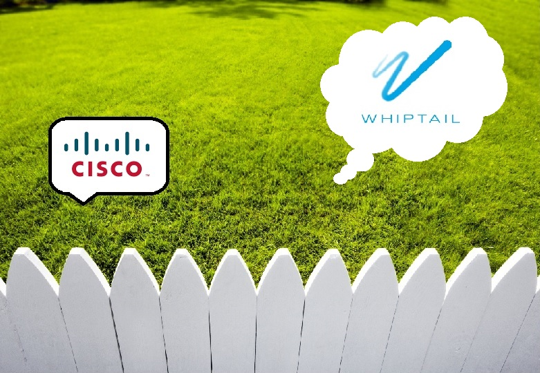cisco, whiptail, acquisition, flash, data storage, keeping up with the joneses, etymology, used IT hardware, used cisco reseller, planit hardware, network hardware